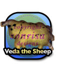Veda the Sheep
